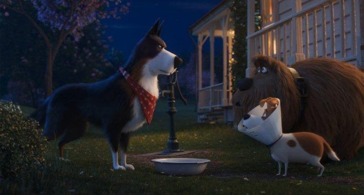 The Secret Life Of Pets 2 Reeling Reviews